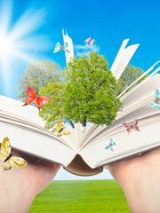 Как правильно подать произведение новому читателю? Марина Снежная